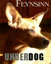 underdog2008